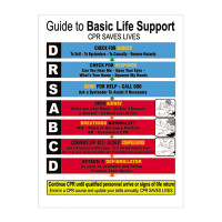 Basic Life Support Flowchart Sign
